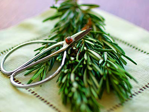 Dry herbs in the microwave
