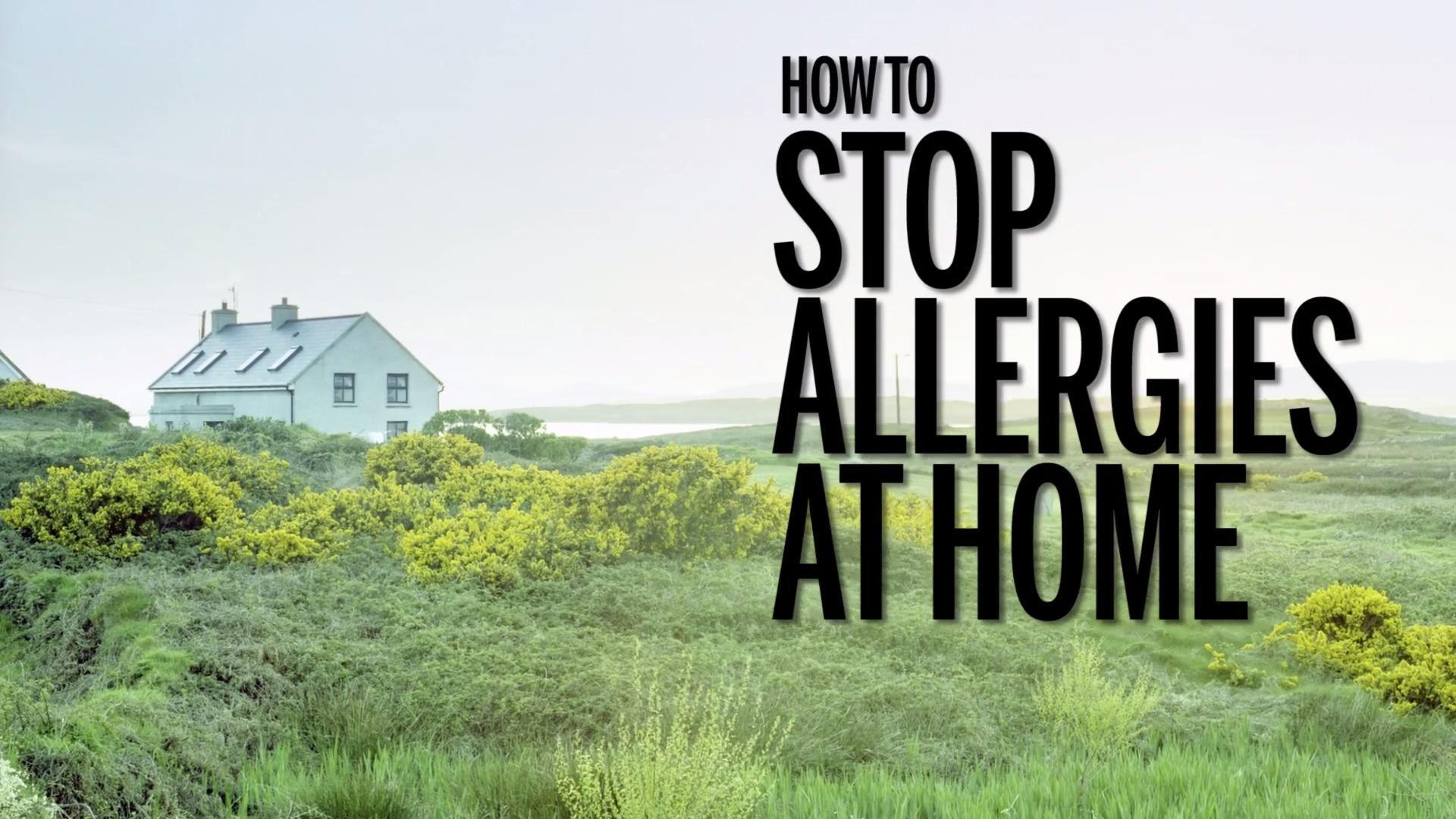 Kick your allergies to the curb