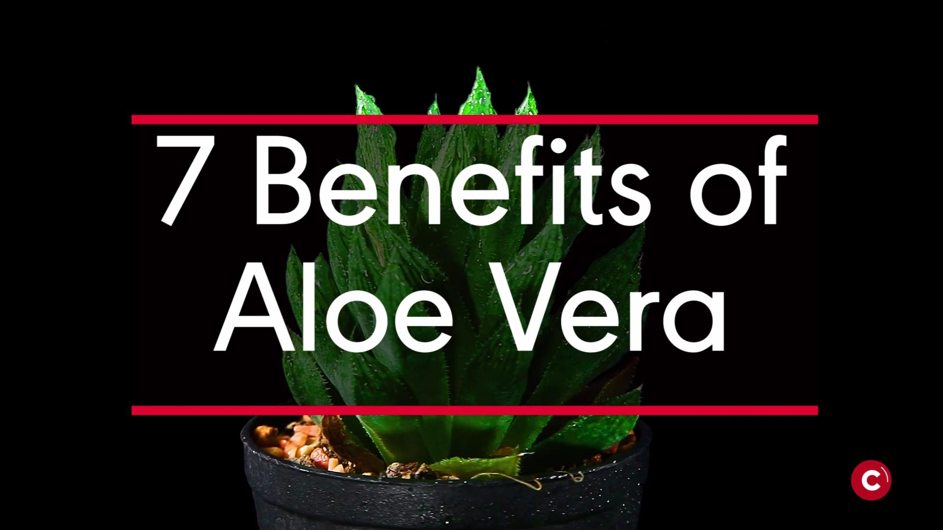 Try aloe vera
