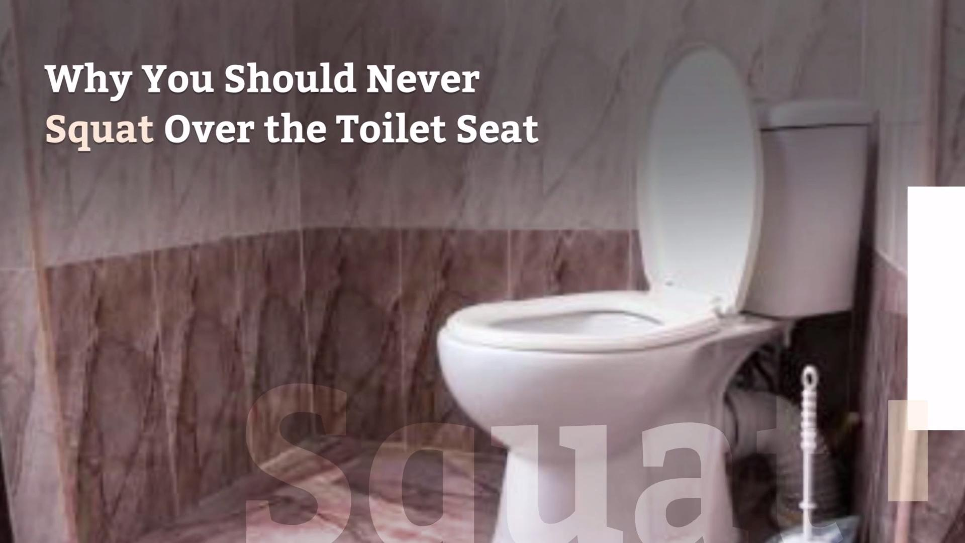 Pleasing Why You Shouldnt Squat Over The Toilet Seat Health Alphanode Cool Chair Designs And Ideas Alphanodeonline