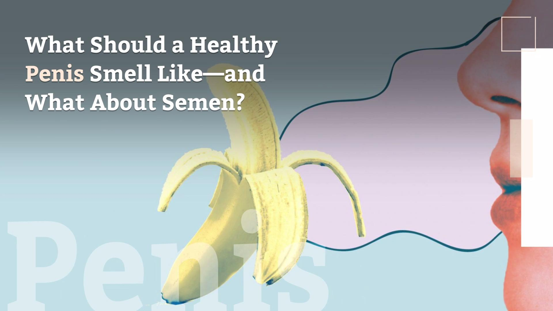 What Should A Healthy Penis Smell Like And What About Semen