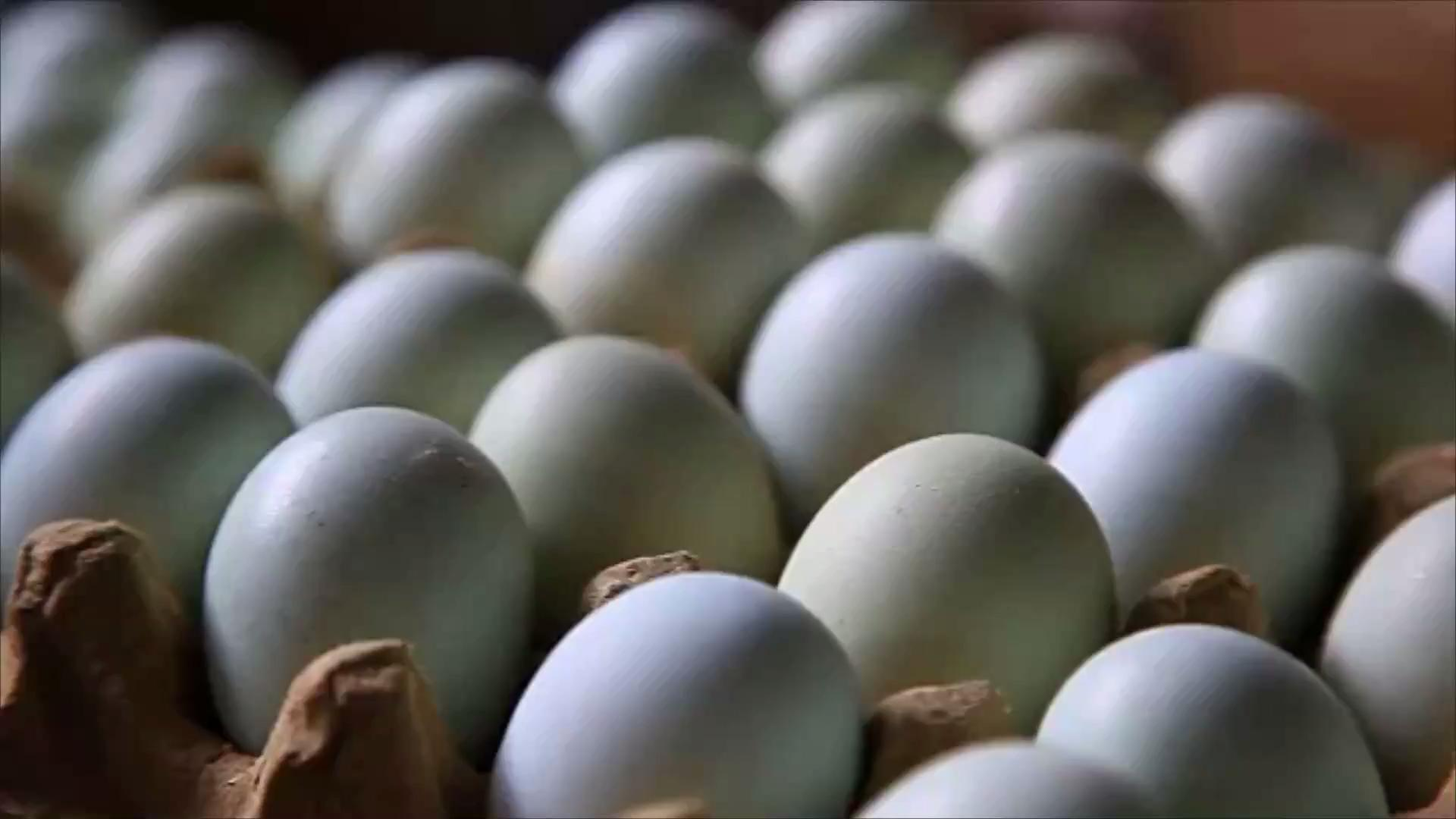 picture This Egg Company Just Recalled 206 Million Eggs—Are You Affected