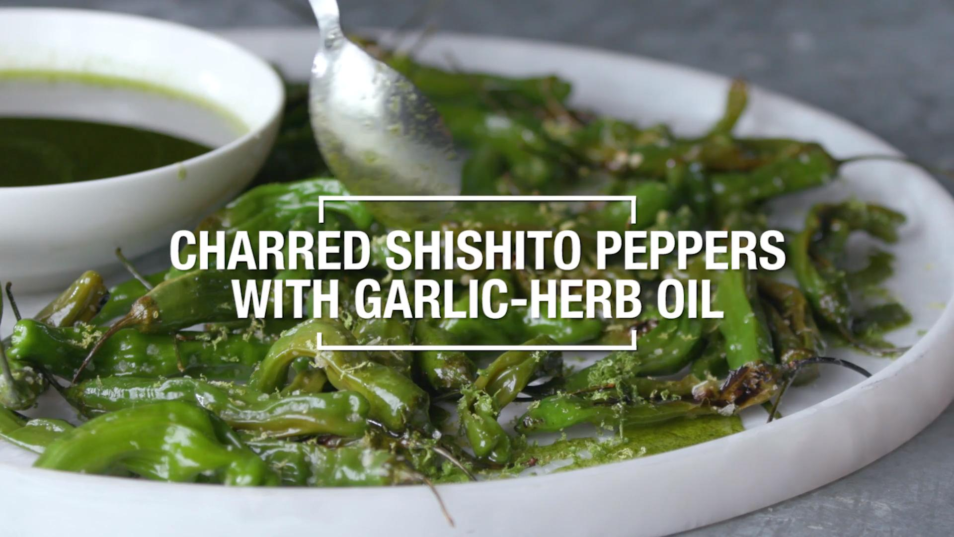 Charred Shishito Peppers with Garlic Herb Oil