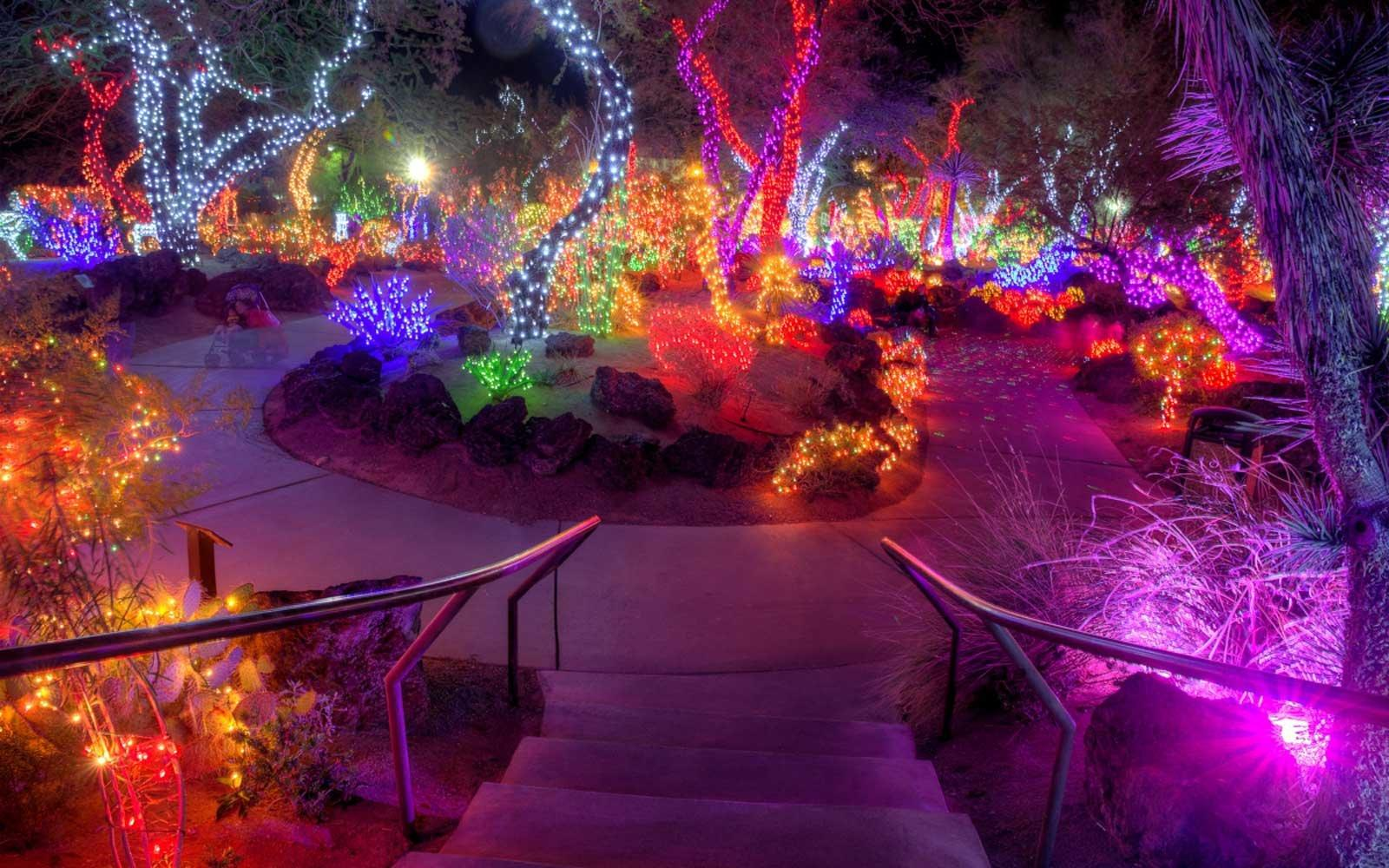 This Nevada Garden Celebrates the Holidays by Wrapping Cacti in ...