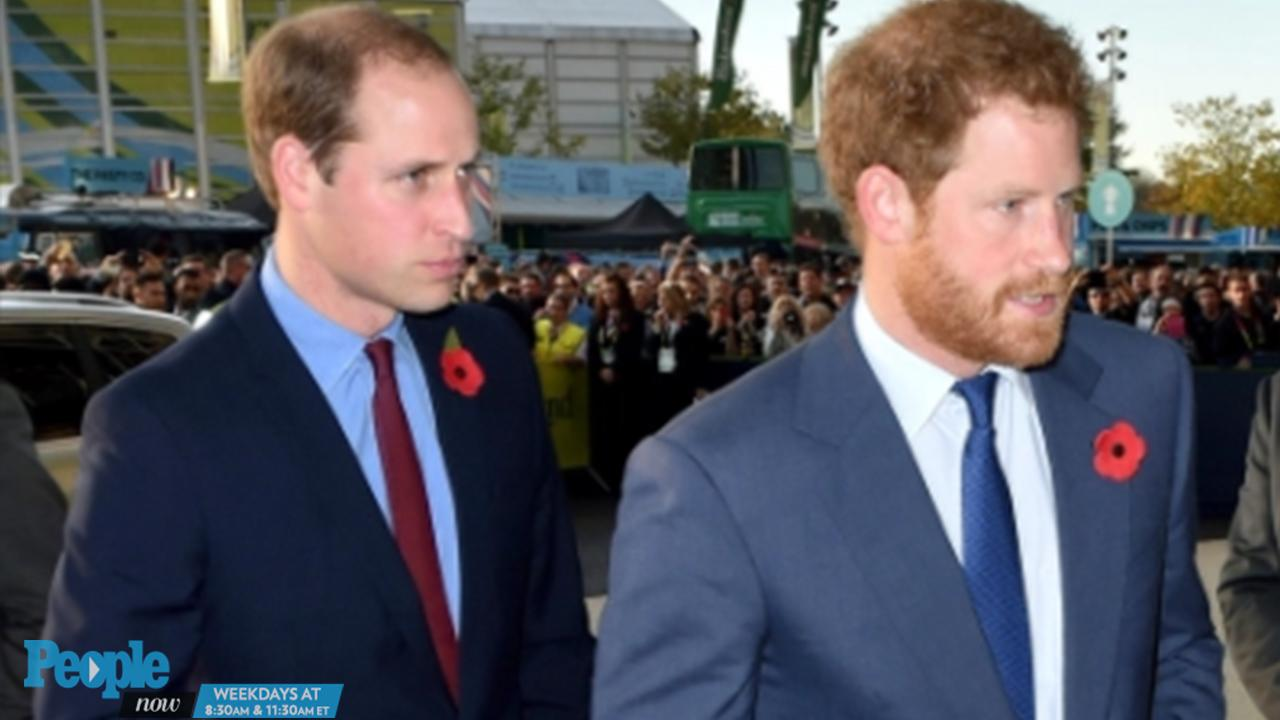 Prince William and Prince Harry Speak Out on Mom Diana's Death: 'We Couldn't Protect Her'