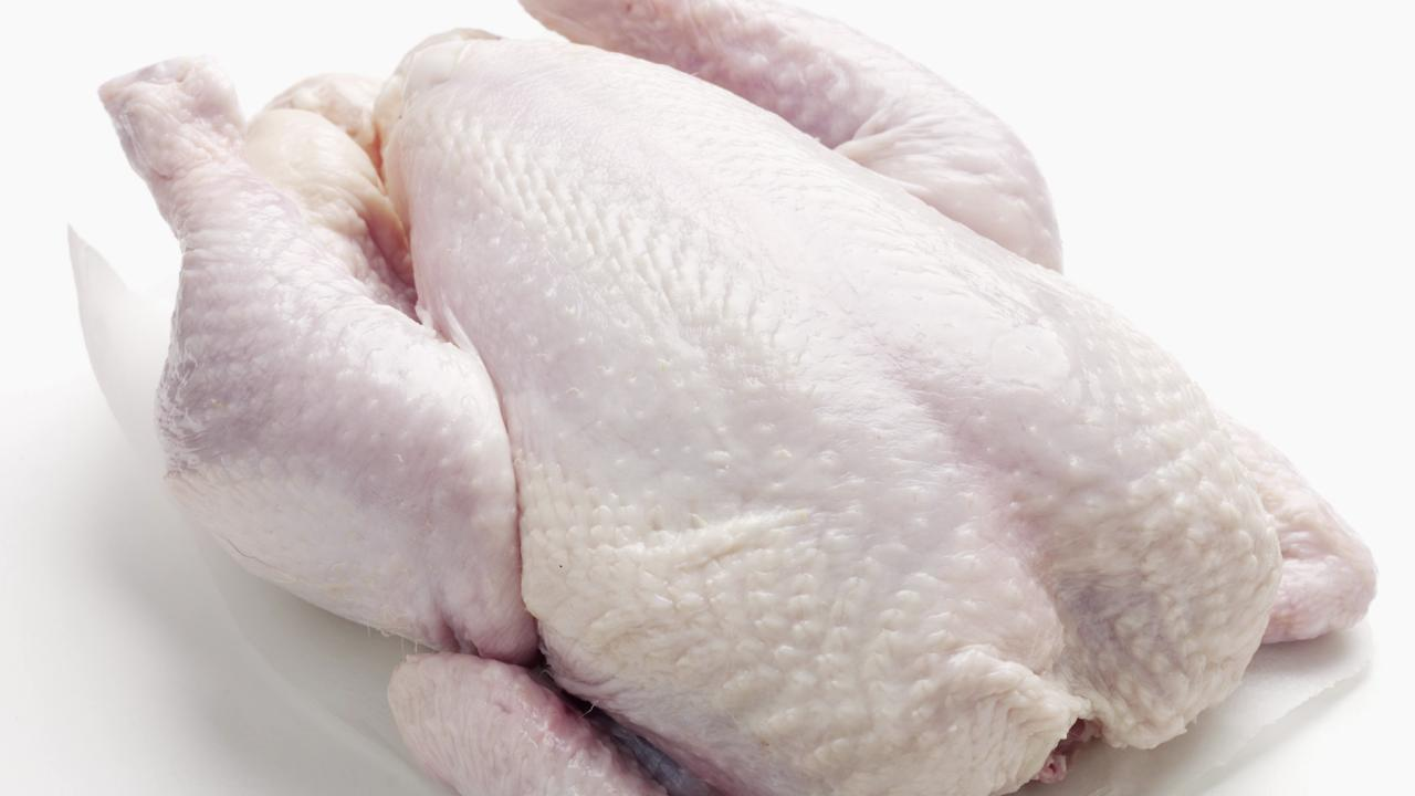 is raw chicken safe for dogs cooking light