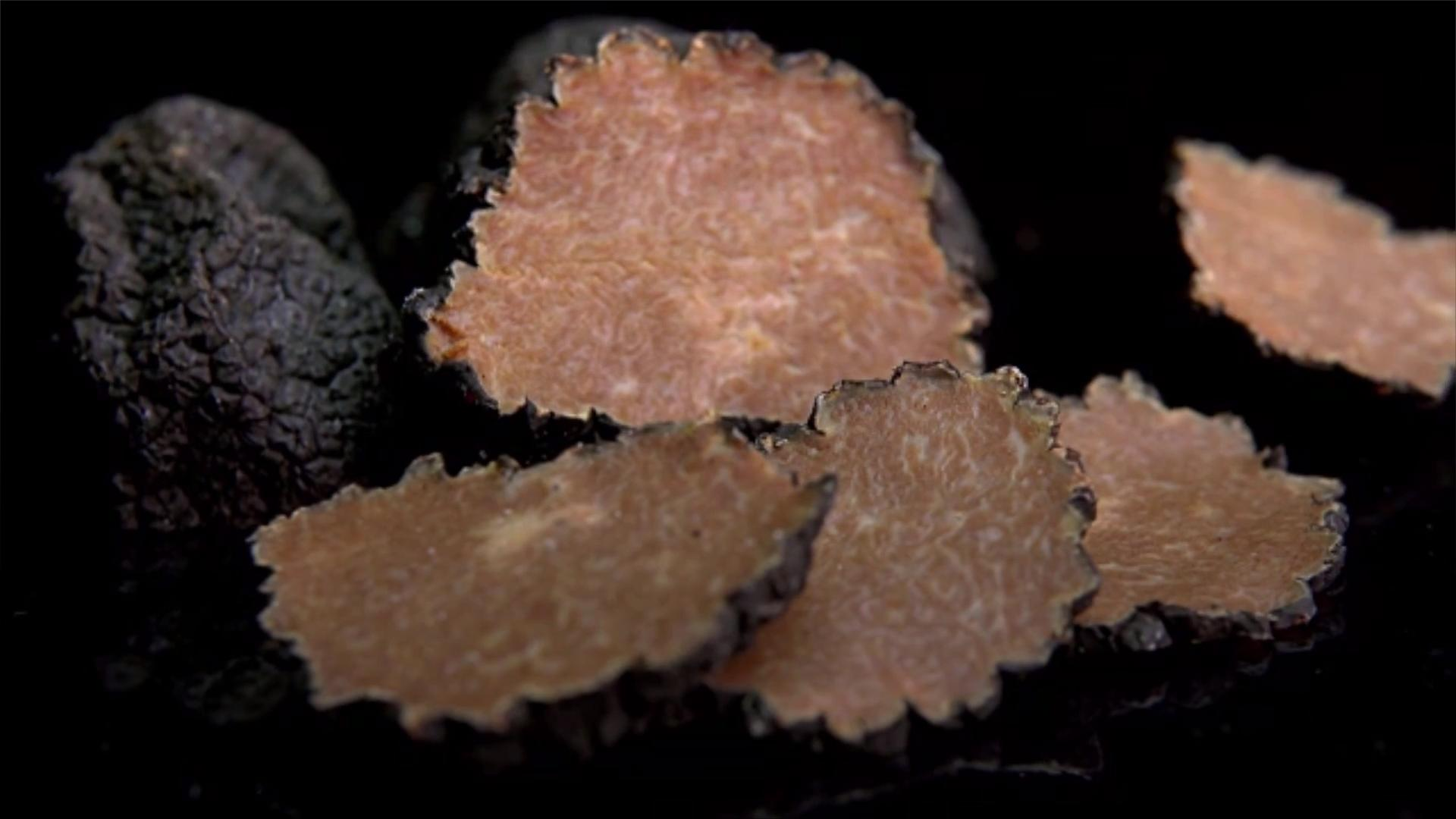 What Are Truffles?