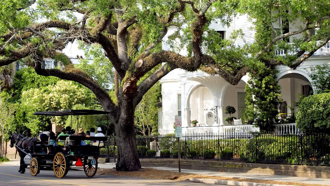 southern travel guide charleston southern living