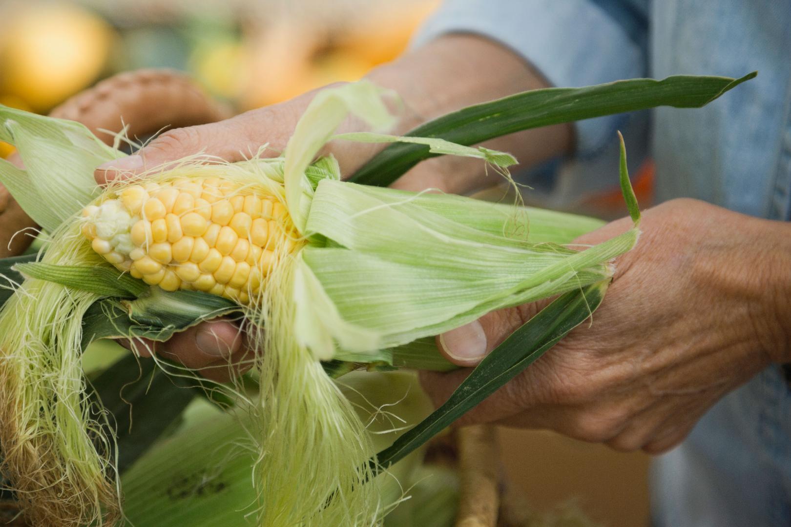 Three Easy Ways to Cook Corn on the Cob