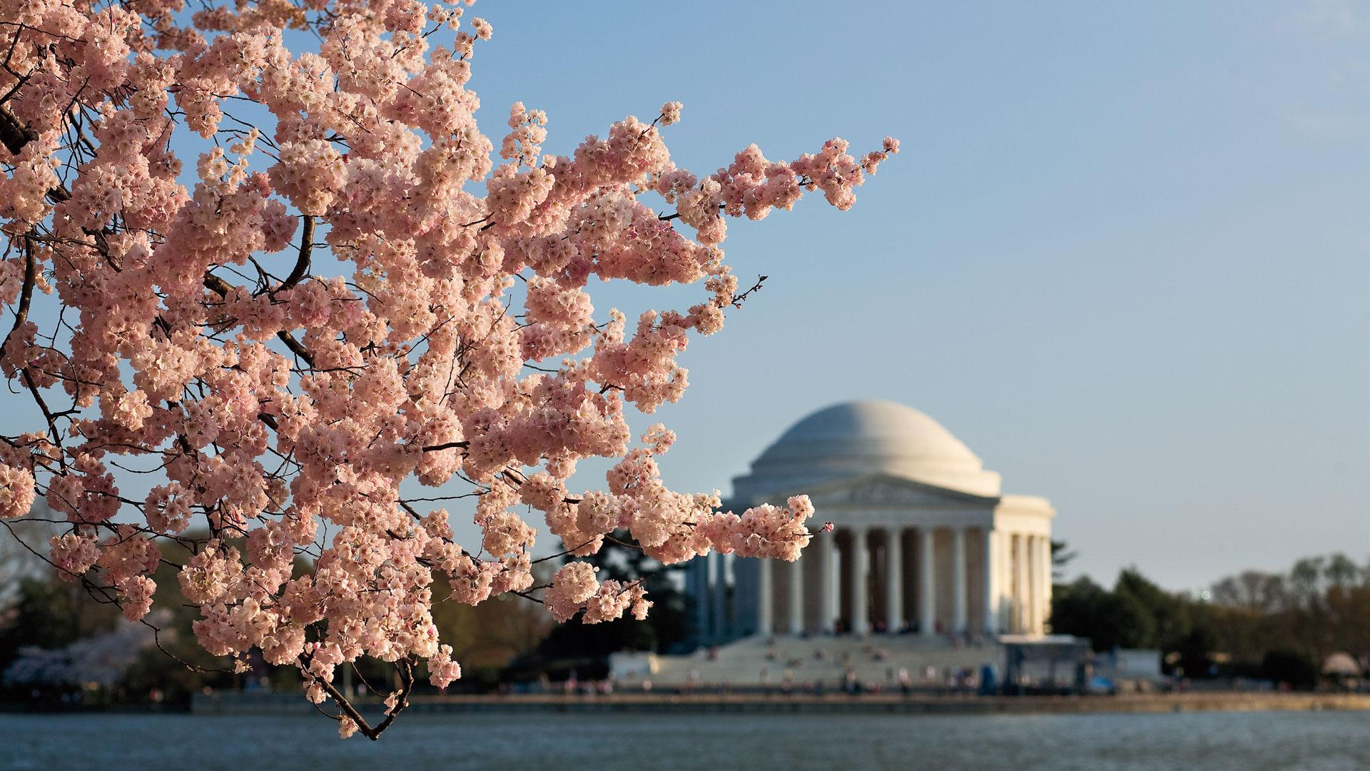 10 things you should do in washington, d.c. - southern living