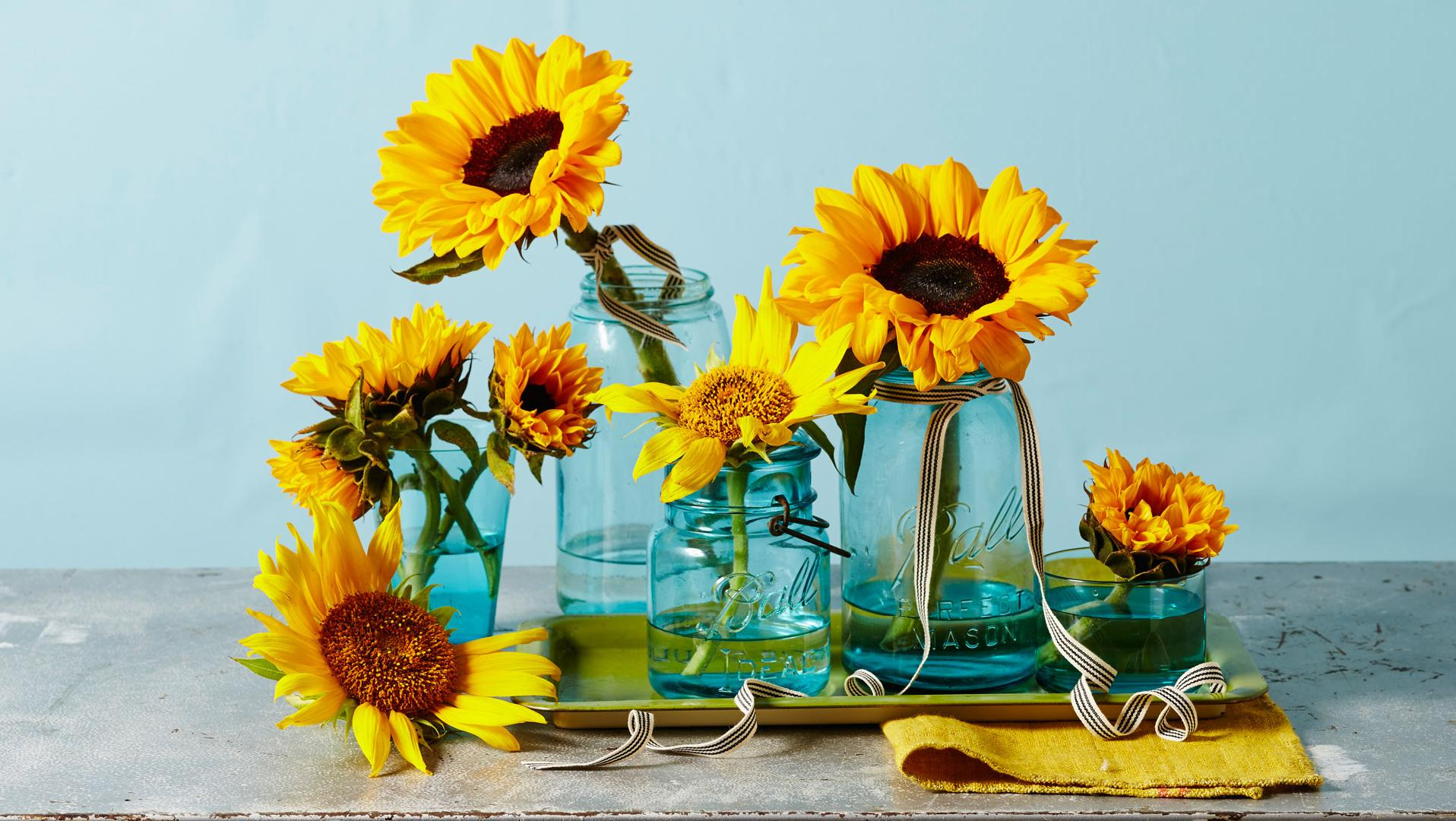 These Sunflower Centerpieces Will Brighten Up Your Breakfast Table - Southern Living  sc 1 st  Southern Living & These Sunflower Centerpieces Will Brighten Up Your Breakfast Table ...