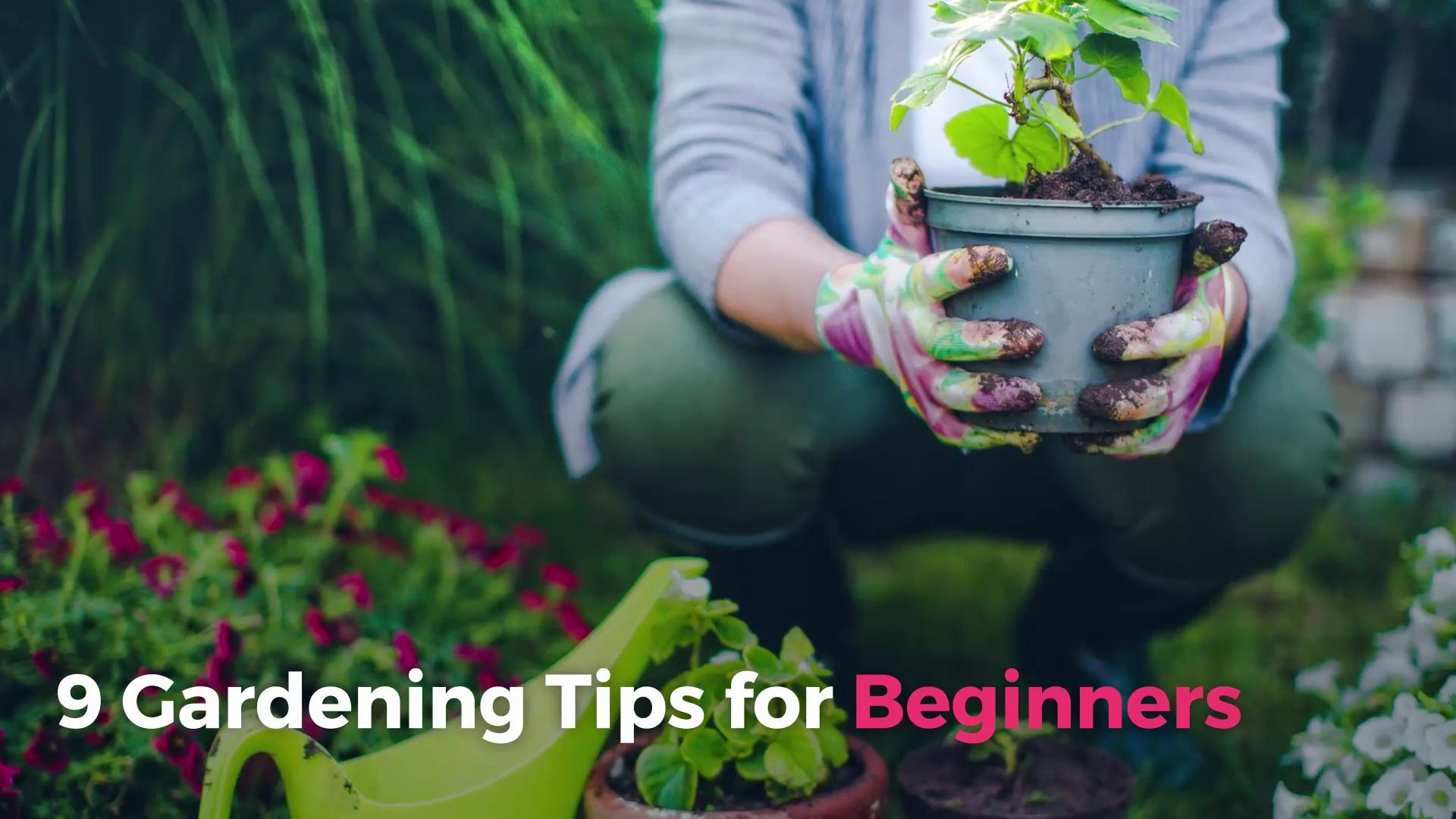 9 Gardening Tips For Beginners Real Simple