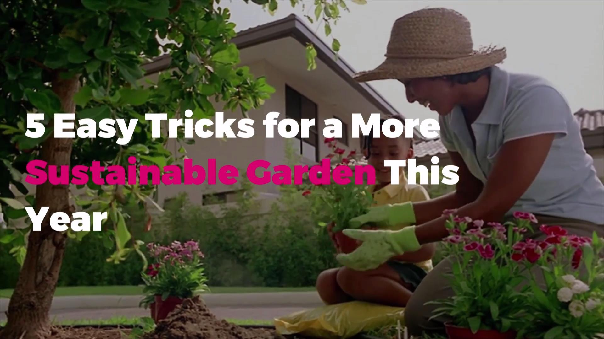 5 Easy Sustainable Gardening Tips | Real Simple