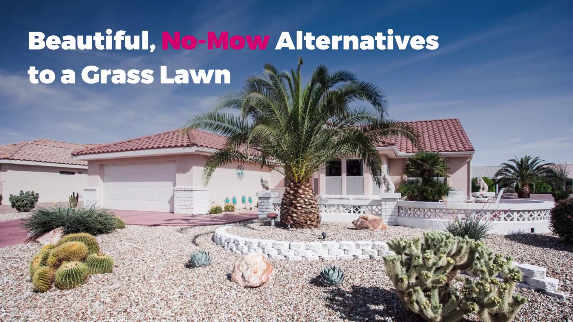Beautiful, No-Mow Alternatives to a Grass Lawn